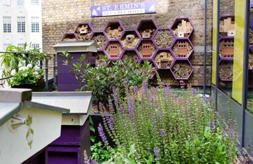 St. Ermin's Hotel in London - beekeeping