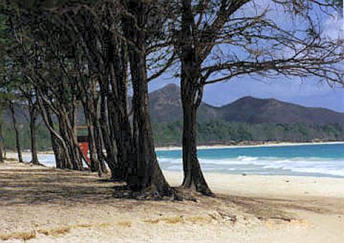 Bellows field beach park hawaii for Oahu camping cabins