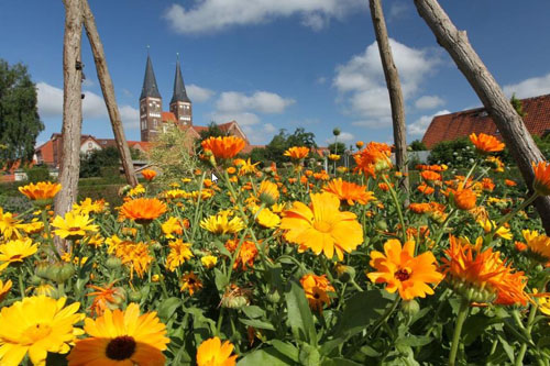 Luther Country, Germany - Monastery garden at the monastery in Jerichow in the Altmark