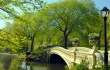 Central Park - New York City tours - Low Bridge