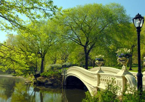 Central Park - New York City tours - Low Bridge