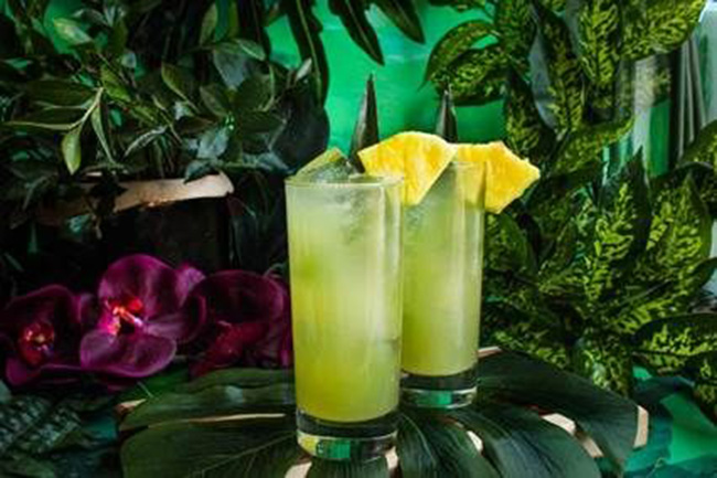 Bacardi Tropical Refresher- Bacardi rum cocktail